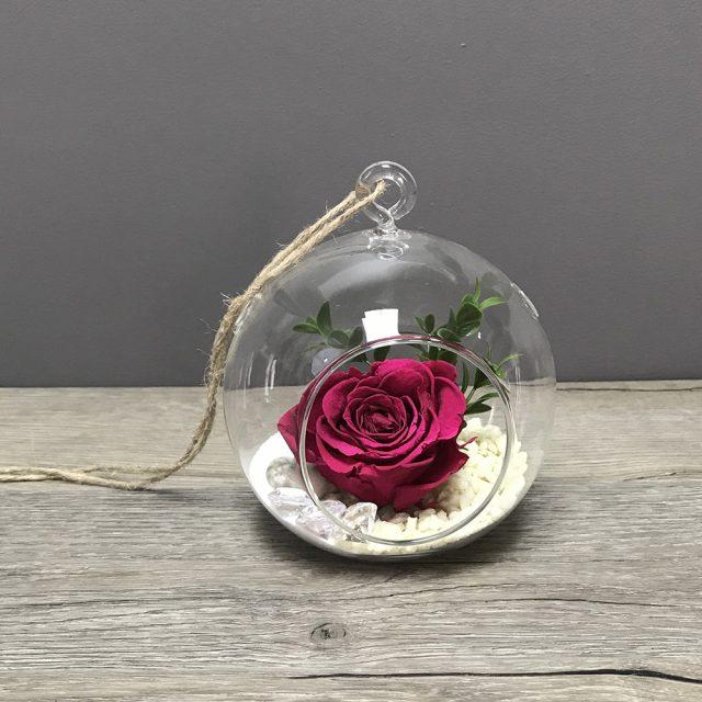 Rose éternelle suspendue
