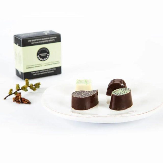 Chocolats forestiers, collection aventurier