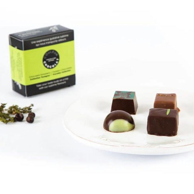 Chocolats forestiers, collection voyageur