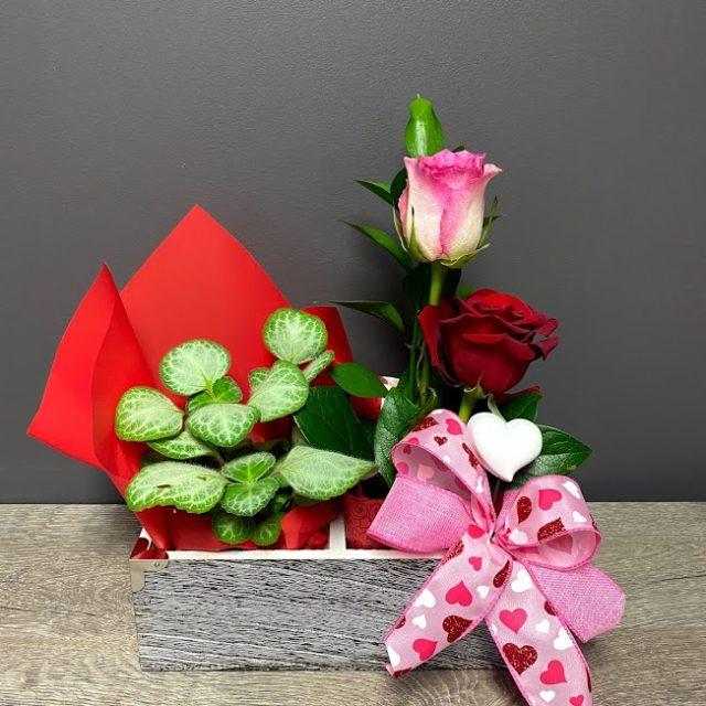 Duo plante et roses, caisson antique